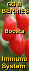 Ormus Minerals --Goji Berries benefit boosts IMMUNE SYSTEM