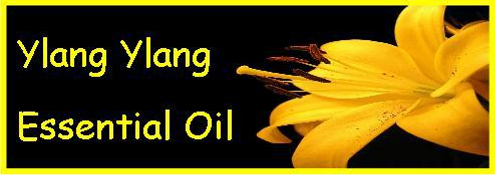 Ormus Minerals YLANG YLANG Essential Oil Products